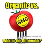 Chemicals in Our Foods: GMOs vs. Organic Foods