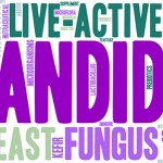 What is Candida and How Does it Affect Your Health?